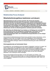 Literatur Mitarbeiterbindung Fachartikel Relationship Fokus Analyzer