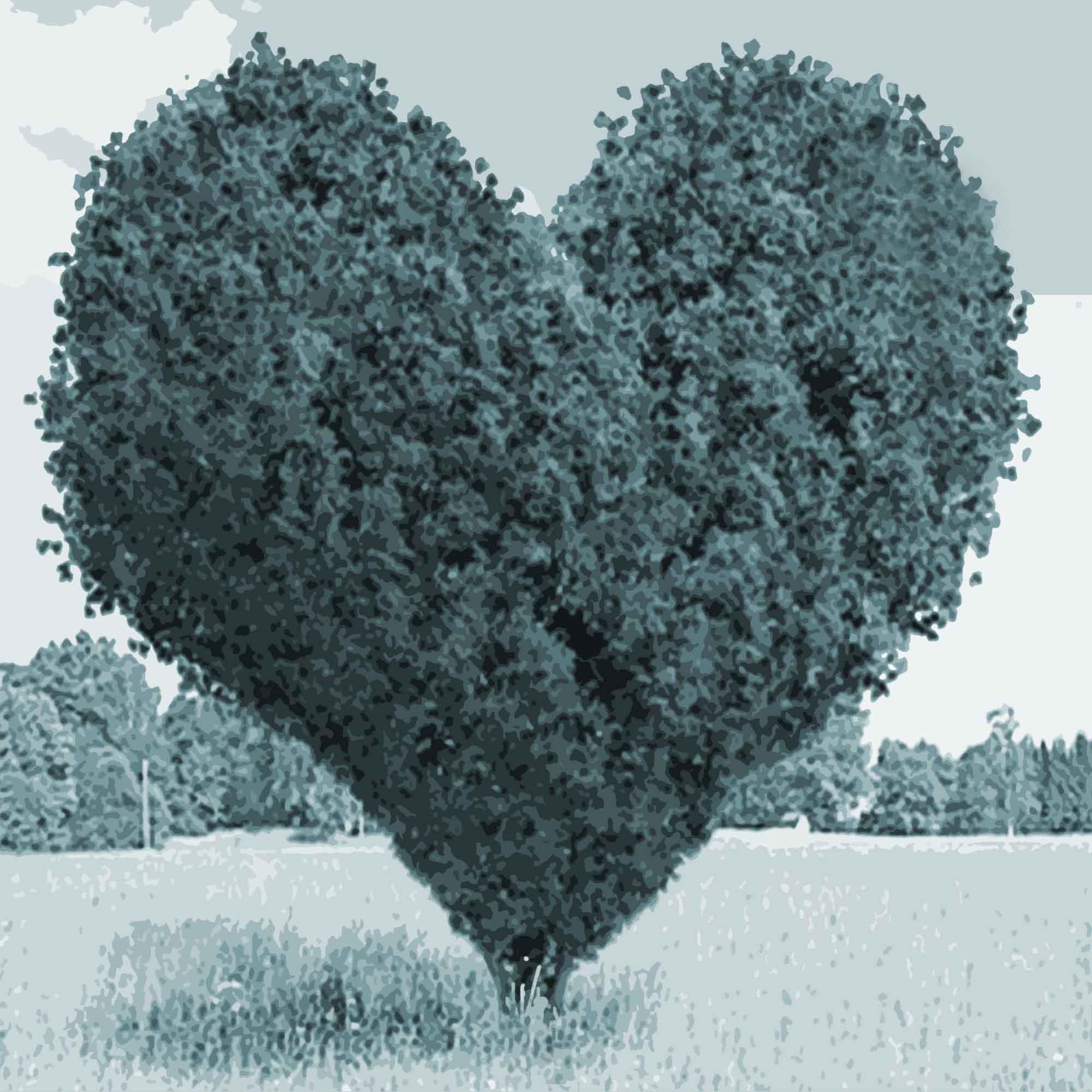 Emotionale Mitarbeiterbindung: Arbeitgeberattraktivität auf der emotionalen Ebene