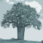 Loyale Führung, treue Mitarbeiter, starkes Unternehmenswachstum
